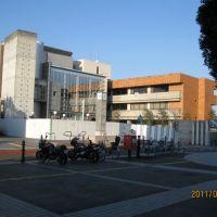 海老名市文化会館(工事中、2011年2月), Ацуги