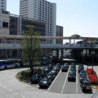 海老名駅前 タクシープール, Ацуги