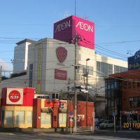 イオン海老名店周辺, Ацуги