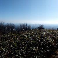 吹越烏帽子山頂から南側の太平洋とむつ湾を望む, Йокогама