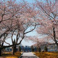 ヴェルニー公園(Verny park), Йокосука