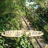 猿島, Йокосука