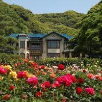 鎌倉文学館のバラ(Rose Garden in Kamakura Museum of Literture), Камакура