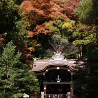 鶴岡八幡宮 白旗神社, Камакура