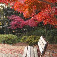 源氏山公園(Genjiyama Park), Камакура
