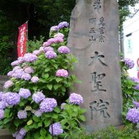 大聖院(Daisei-in), Одавара