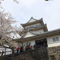 小田原城, Одавара