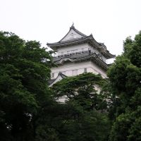 小田原城天守閣を望む (Overlook castle tower of Odawara castle), Одавара