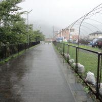 トロッコ亀岡, Камеока