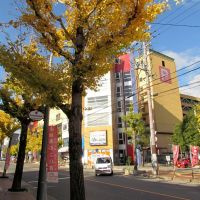 京都 龜岡 Kameoka,Kyoto,Japan, Камеока