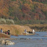 Hozu-Gawa River Trip, Arashiyama, Камеока