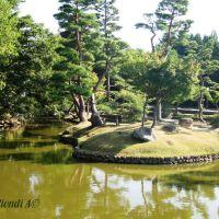 japanase zen garden, Киото