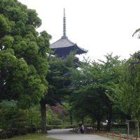 京都, Киото