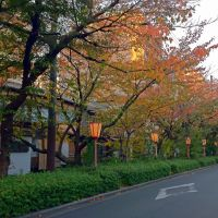 Autumn of Kiyamachi Street in Kyoto 秋の木屋町通, Киото