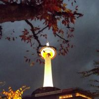 Kyoto Tower with Autumn leaves., Киото