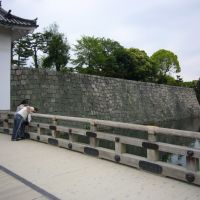 二条城 本丸櫓門Nijo castle, Маизуру