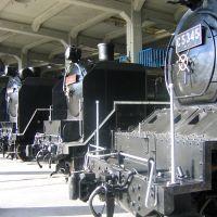 train4, Маизуру