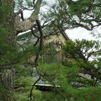 Nijo Castle, Маизуру