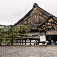 Ninomaru Palace, Nijo castle, Kyoto, Уйи