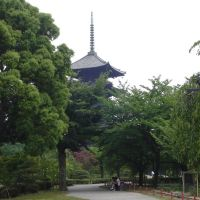 京都, Уйи