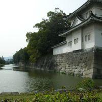 Nijo Castle moat, Уйи