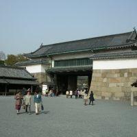 Nijo Castle entrance, Уйи