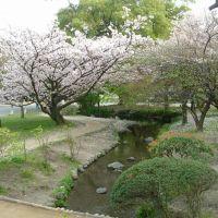 Kyoto Gyoen National Garden, Уйи