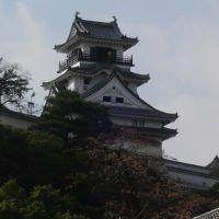 高知城(Kochi Castle), Кочи