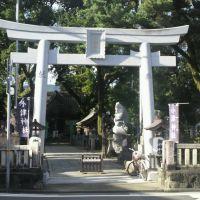 小津神社2(F), Кочи