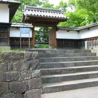 The former residence of the feudal lord Gyobu, Kyu Hosokawa Gyobu tei, 旧細川刑部邸, Кумамото