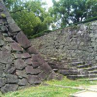 Kumamoto castle, 熊本城, Минамата