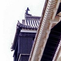 Kumamoto - castle http://en.wikipedia.org/wiki/Kumamoto, Минамата