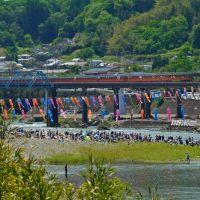 豊後大野市 犬飼のどんこ釣り大会! A fishing tournament...but the participating people seem to enjoy in a river., Исе