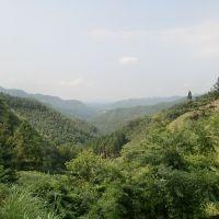 三国灰立線から三重町方面を臨む, Сузука