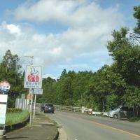 国道502号 臼杵市→豊後大野市 (2008.08), Сузука