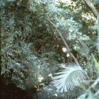 1LT Orvil Hill in jungle, Кесеннума