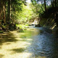 澄川堰堤下流, Саито