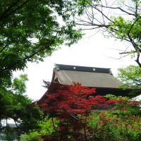 善光寺 境内, Матсумото