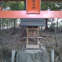 2009.02.21. 曽羽神社, Нагано