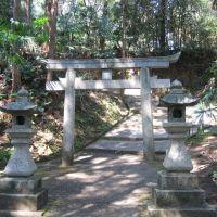 高市郡高取町市尾・曽羽神社, Нагано