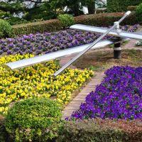 城山公園 花時計, Саку