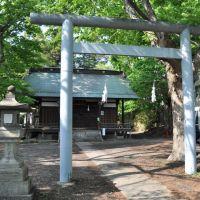 Ise-sha  伊勢社  (2009.05.09), Саку