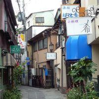 Akiba Yokocho Alley 秋葉横丁, Саку