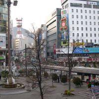 JR長野駅西口(JR Nagano stn. west), Сува
