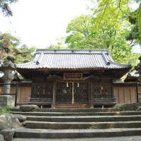 Takeminakatatominomikoto-hikokamiwake-Jinja  健御名方富命彦神別神社  (2009.05.09), Сува