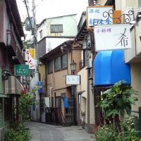 Akiba Yokocho Alley 秋葉横丁, Сува