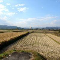 枯田からホテルシンフォニーアネックスを望む, Нагасаки