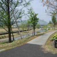 Cherry Spa Park, Сасэбо
