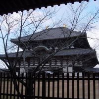 Nara   Todai-ji-temple  2.1324, Кашихара