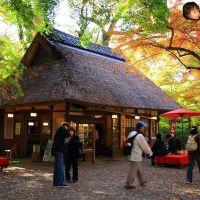 水谷茶屋, Нара
